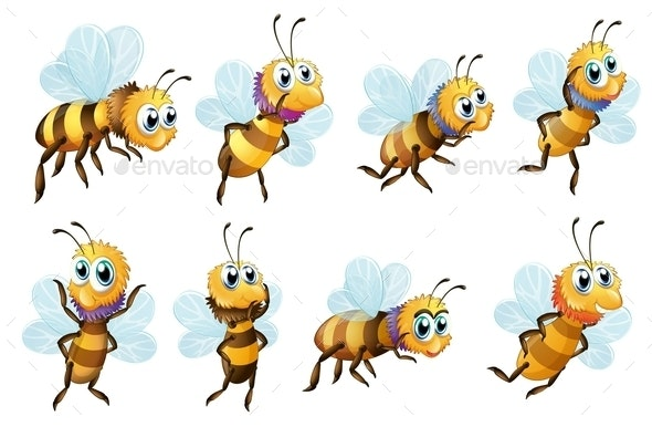 Eight Bees in different Positions - Animals Characters