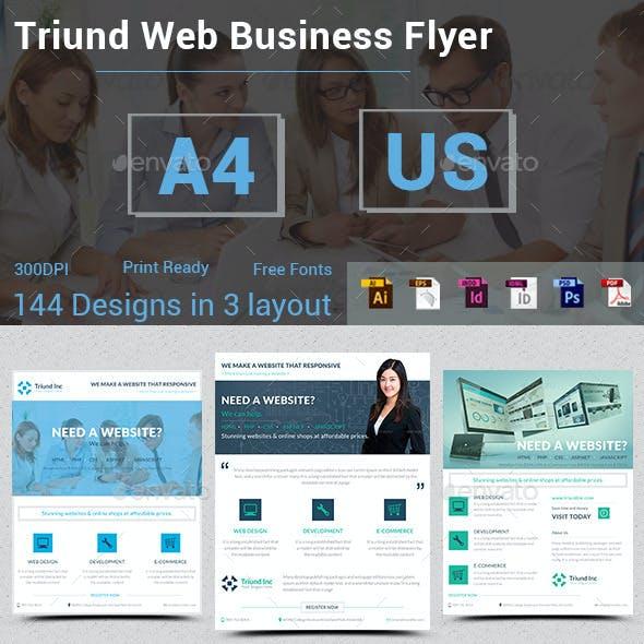 Triund Web Business Flyer