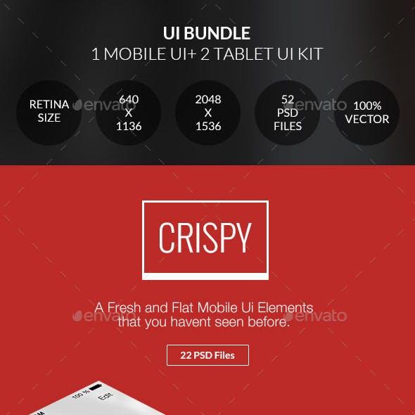 Bundle - Flat & Professional UI