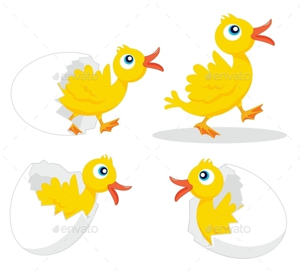 Four Chicks - Animals Characters