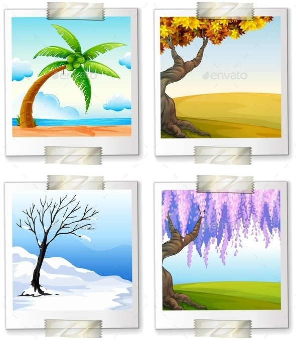 Different Images of the Four Seaons - Seasons Nature