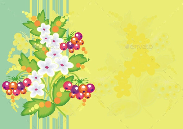 Abstract Flowers and Berries with Background  - Flowers & Plants Nature