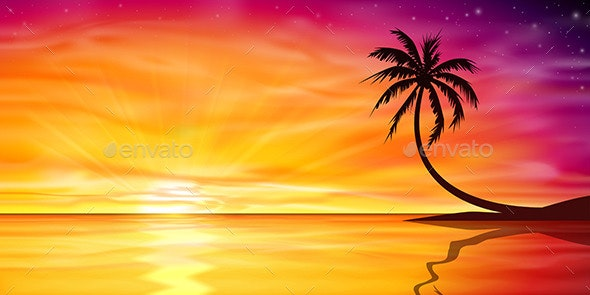 Sunset, Sunrise with Palm Tree - Landscapes Nature