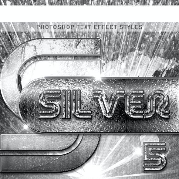 10 Silver Font_5