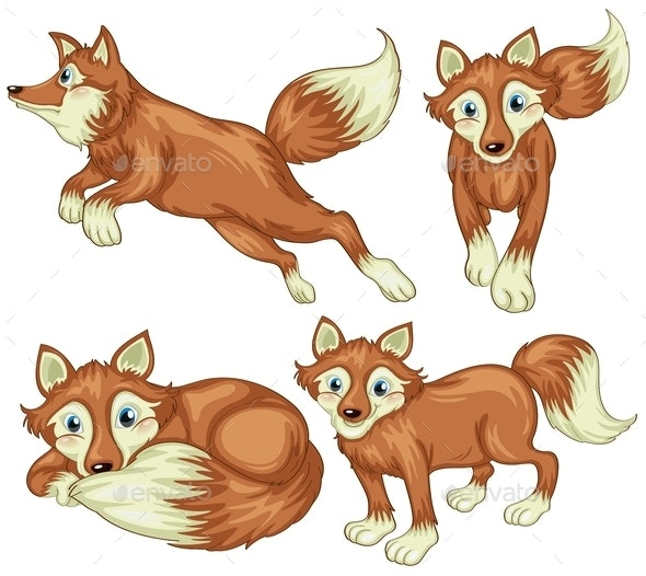 Four Foxes - Animals Characters