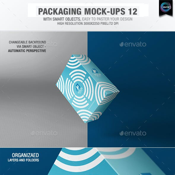 Packaging Mock-ups 12