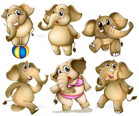 Elephant Set - Animals Characters