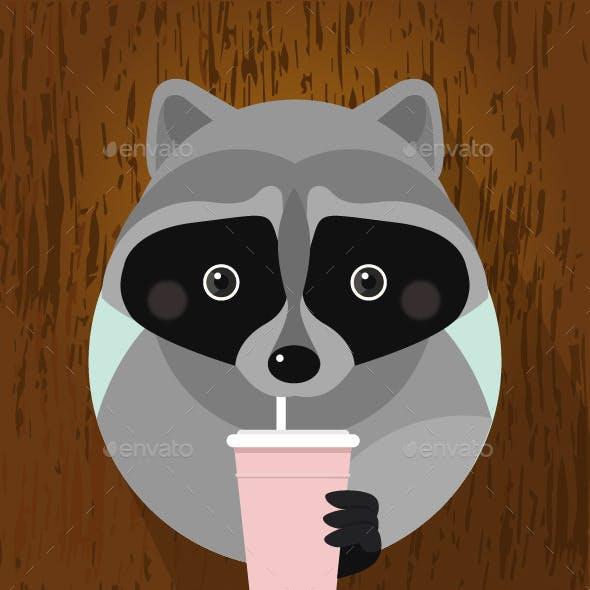 Flat Raccoon