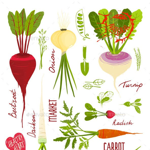 Root Vegetables with Greens Signs and Symbols