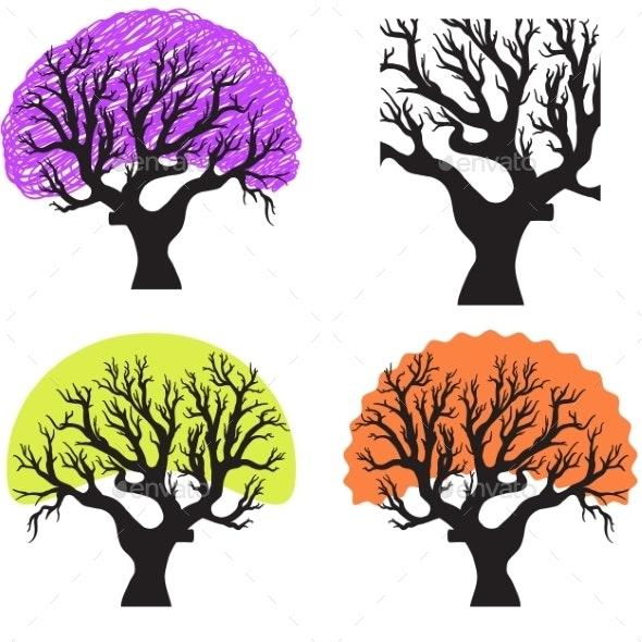 Group of Trees - Seasons Nature