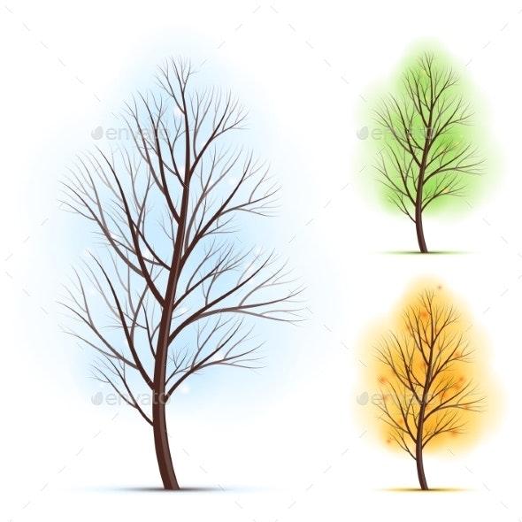 Season Trees - Flowers & Plants Nature