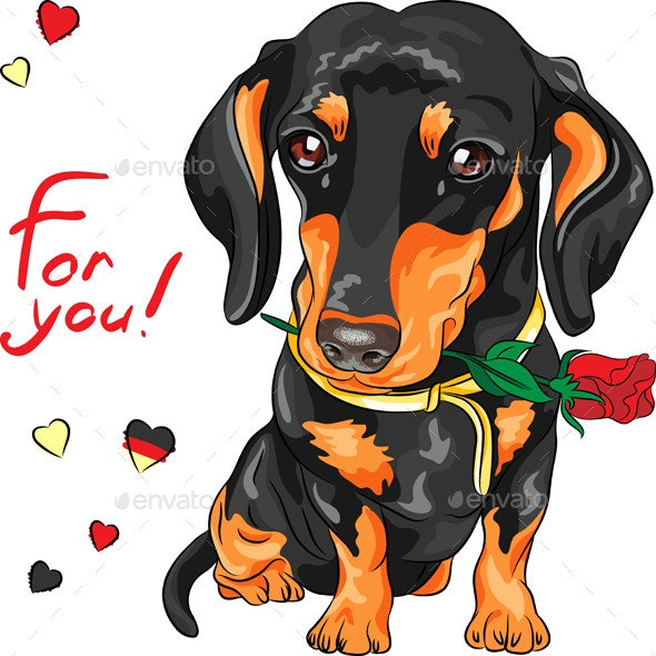Dachshund with Red Flower - Animals Characters