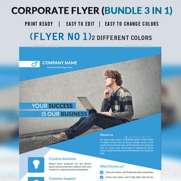 Corporate Flyer Bundle 3 in 1