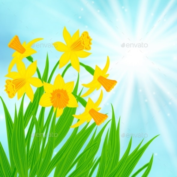 Daffodils Background - Seasons Nature