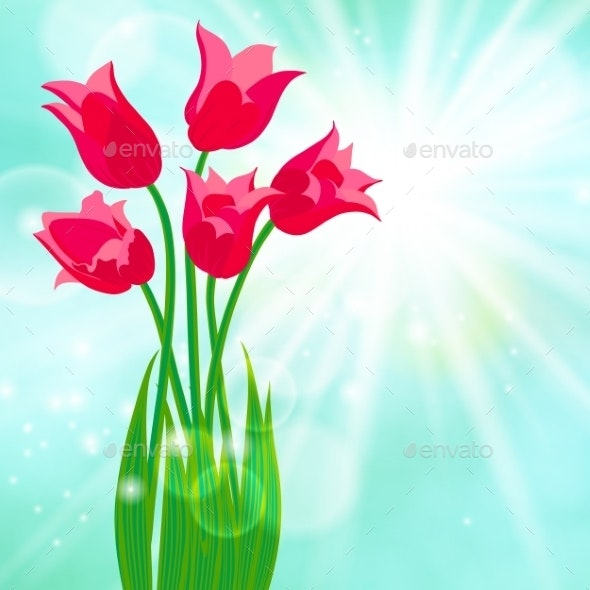 Spring Card Background with Red Tulips - Seasons Nature