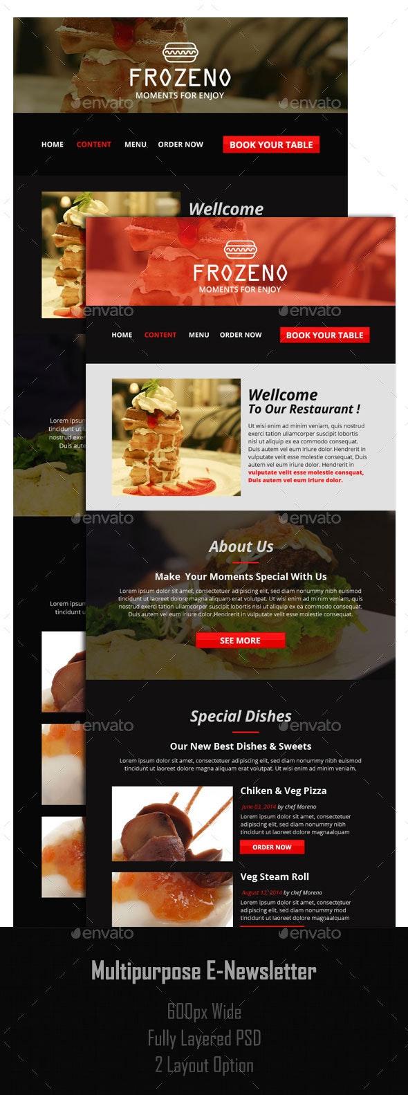 Multipurpose E-Newsletter - E-newsletters Web Elements