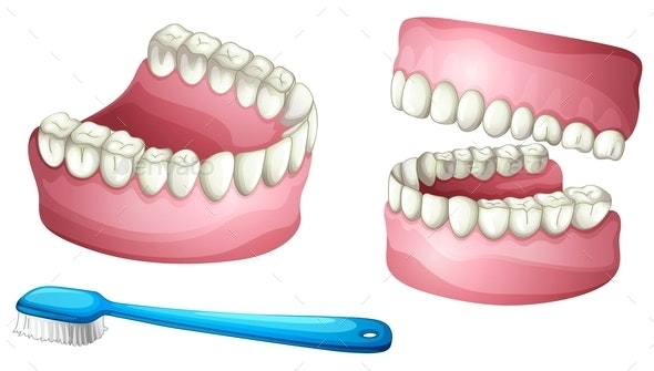 Dentures and Tooth Brush - Health/Medicine Conceptual