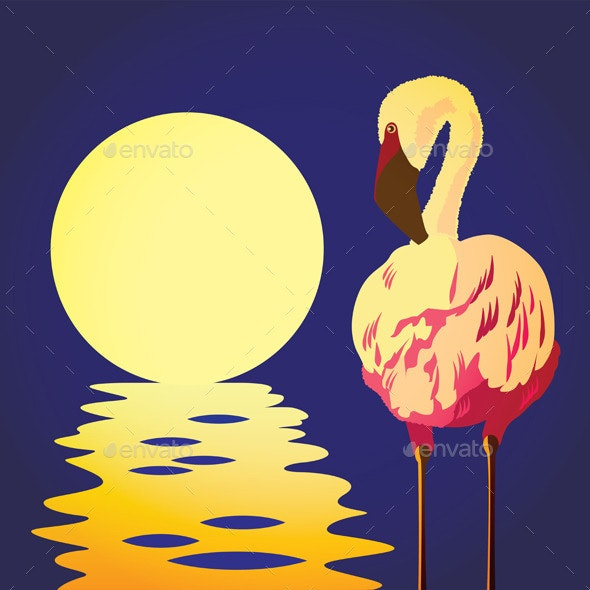 Flamingo in the Sun - Animals Characters