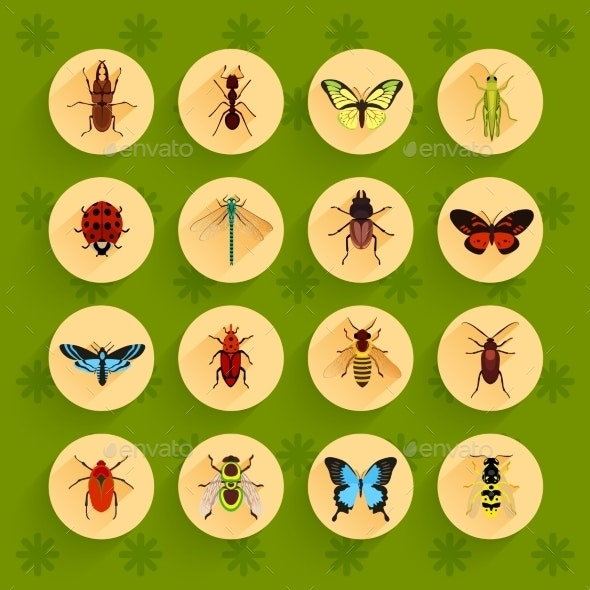 Insects Flat Icons Set - Animals Characters