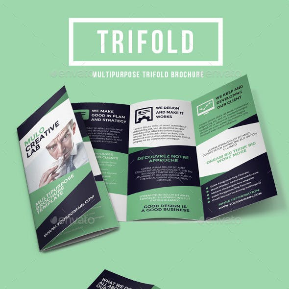 Multipurpose Trifold Brochure Vol. 5