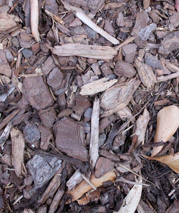 Wood Chips - Wood Textures
