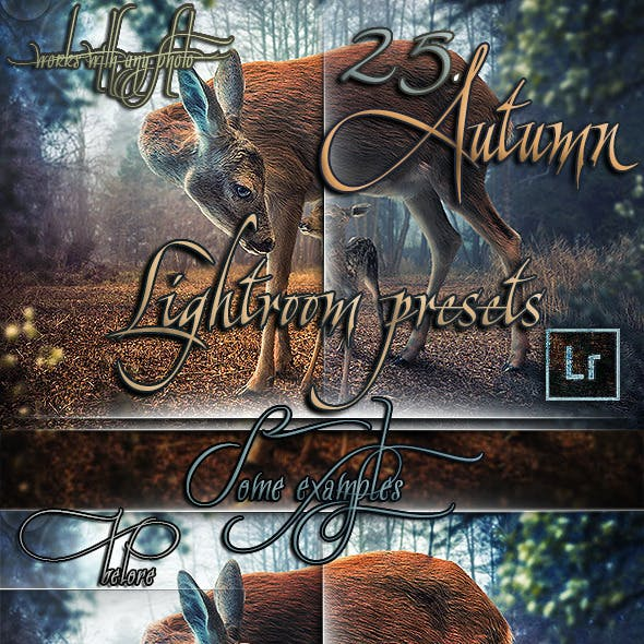 25 Professional Autumn Lightroom