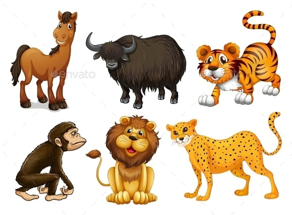 Different Kinds of Four-Legged Animals - Animals Characters