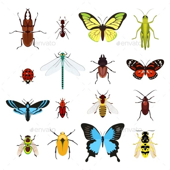 Insects Icons