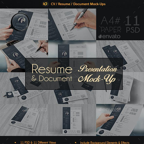 Resume Paper Graphics Vectors From Graphicriver