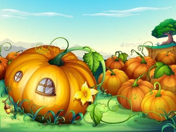 Pumpkins - Food Objects