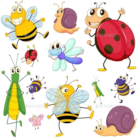 A Group of Insects - Animals Characters