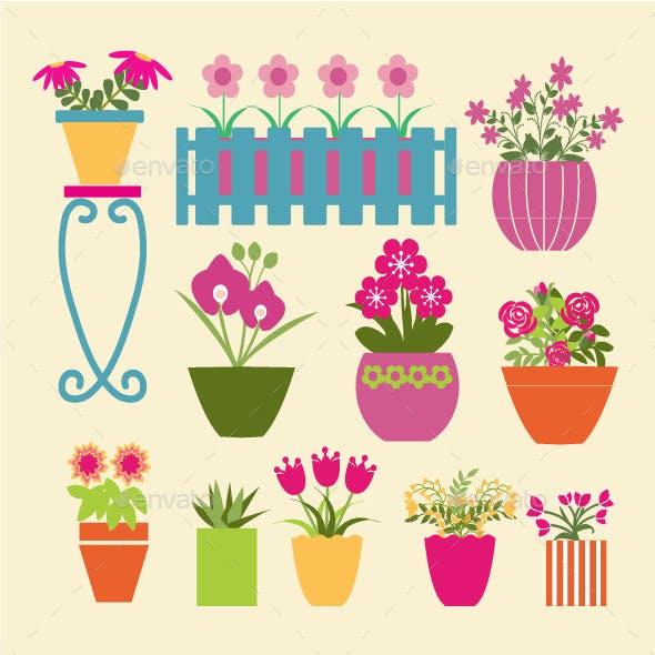 Set of Garden Flowers  and  Herbs in Pots