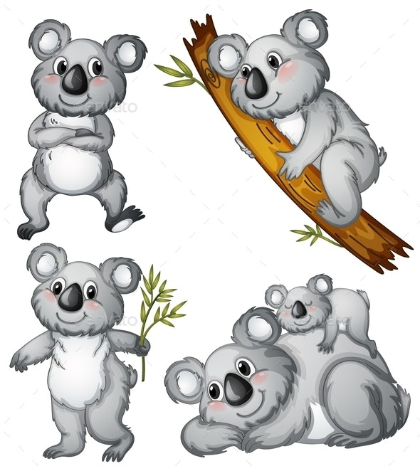 A Group of Koalas  - Animals Characters