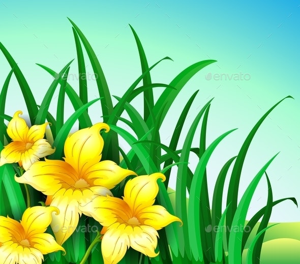 A Garden with Yellow Flowers - Food Objects