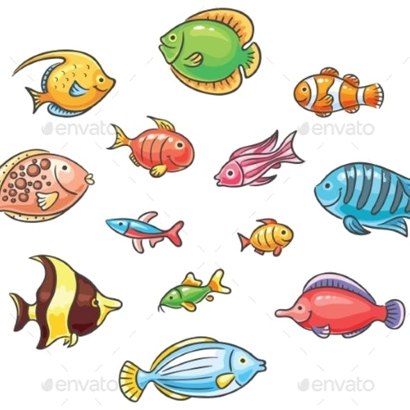 Tropical Fishes
