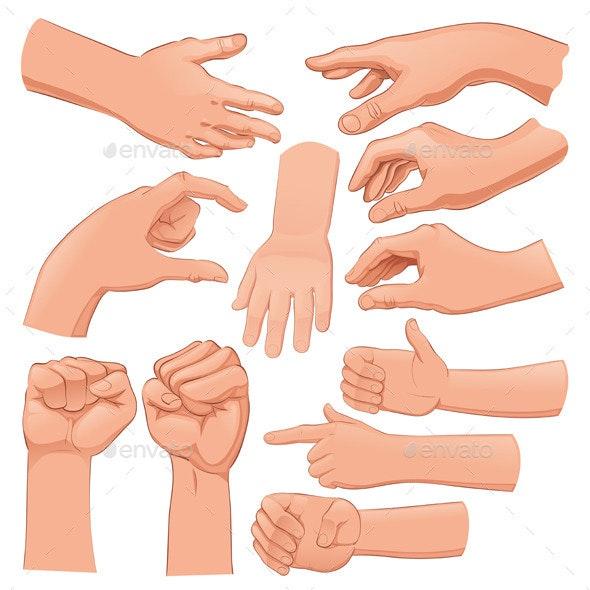 Set of Several Hands - Objects Vectors