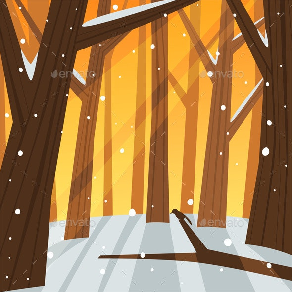 Winter in the Forest - Seasons Nature