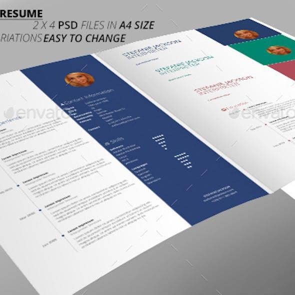 CV Elegant Resume
