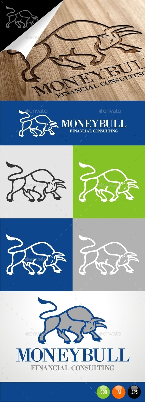 Money Bull Financial Consulting