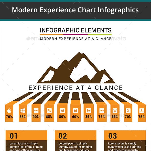 Modern Experience Chart Infographics