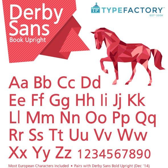 Derby Sans Book