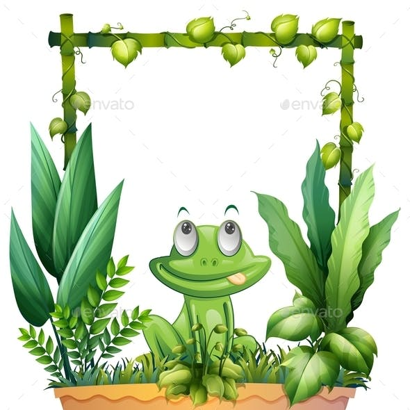 Thinking Frog with Background