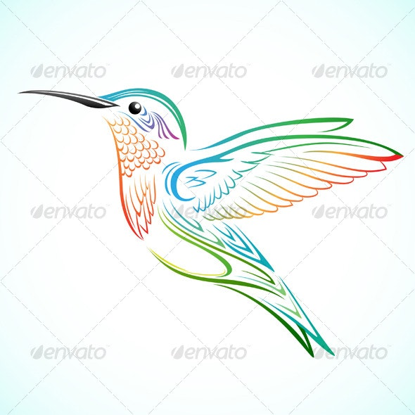 Colorful Hummingbird - Animals Characters