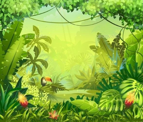 Jungle - Landscapes Nature