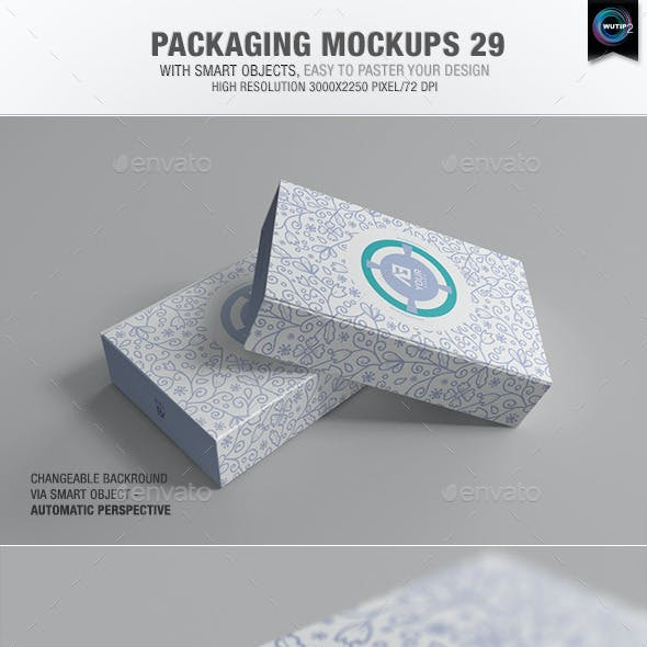 Packaging Mock-ups 29