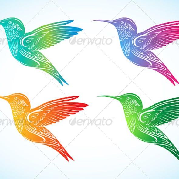 Colorful Hummingbird 2