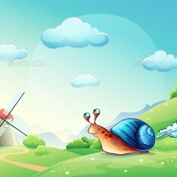 Snail on a Meadow