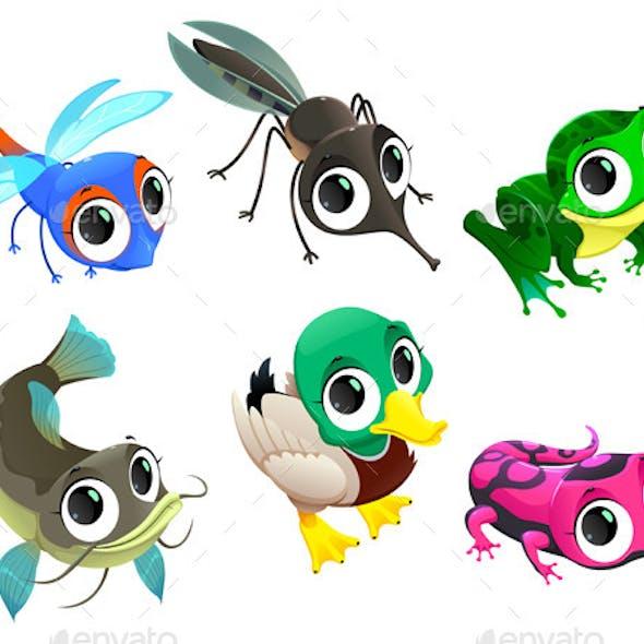 Animals of the Pond