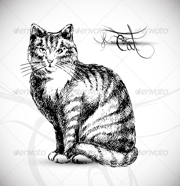 Cat drawing - vector - Animals Characters