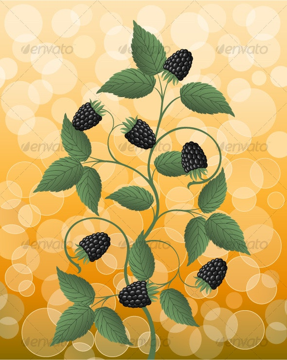 Floral background with a blackberry - Flowers & Plants Nature